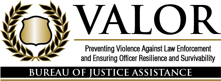 The Valor Initiative Logo